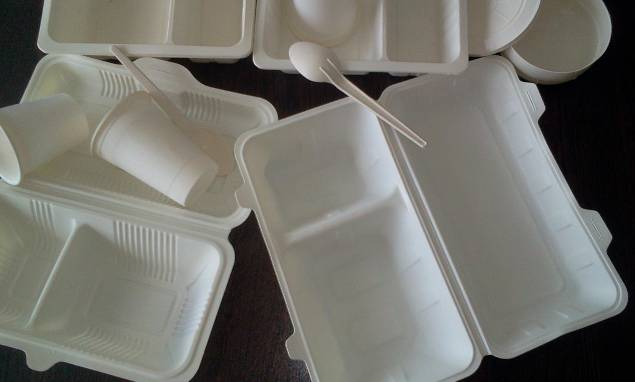 فروش اینترنتی ظروف یکبار مصرف گیاهی