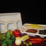 خرید ظروف یکبار مصرف گیاهی