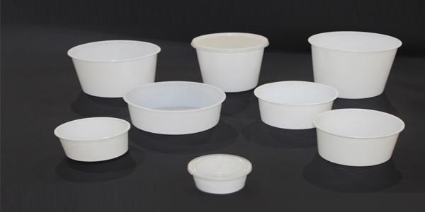 تولید ظروف یکبار مصرف پ پ