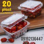 ظروف یکبار مصرف بسته بندی میوه تازه