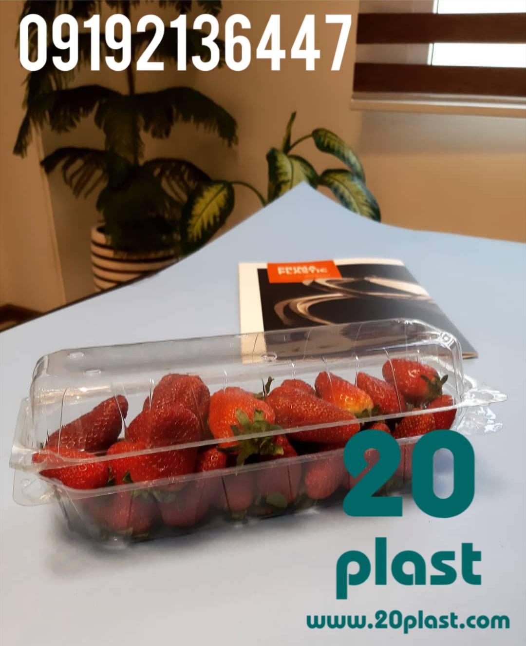 فروش ظروف بسته بندی درب دار میوه
